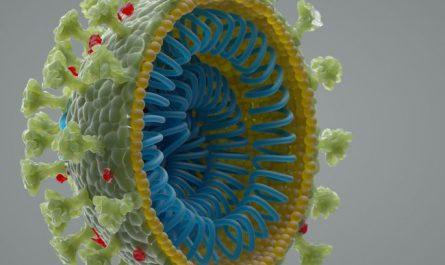 Viruses like the novel coronavirus are shells holding genetic material. (Image: © Andriy Onufriyenko/Getty Images)